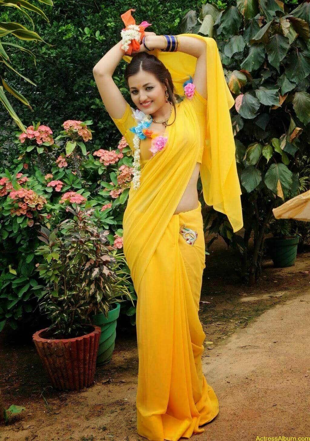Sana Oberoi Hot Navel Show in Yellow Saree Spicy Photos South Actress2