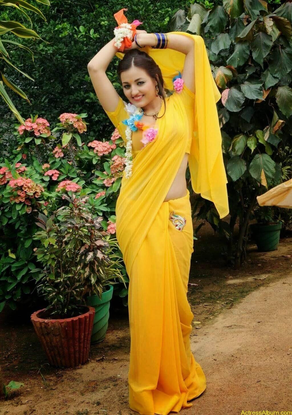 Sana Oberoi Hot Navel Show in Yellow Saree Spicy Photos South Actress2