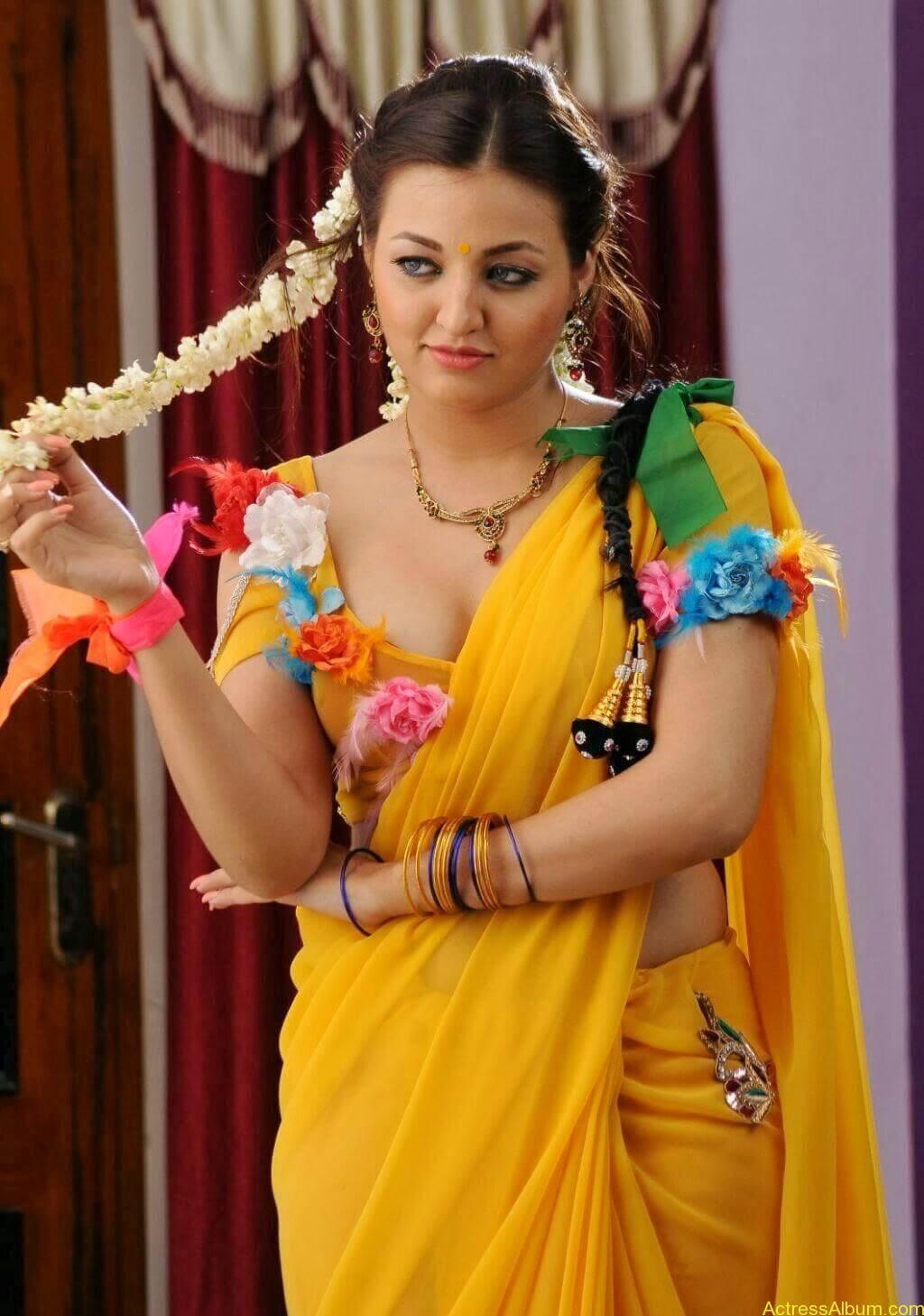 Sana Oberoi Hot Navel Show in Yellow Saree Spicy Photos South Actress3