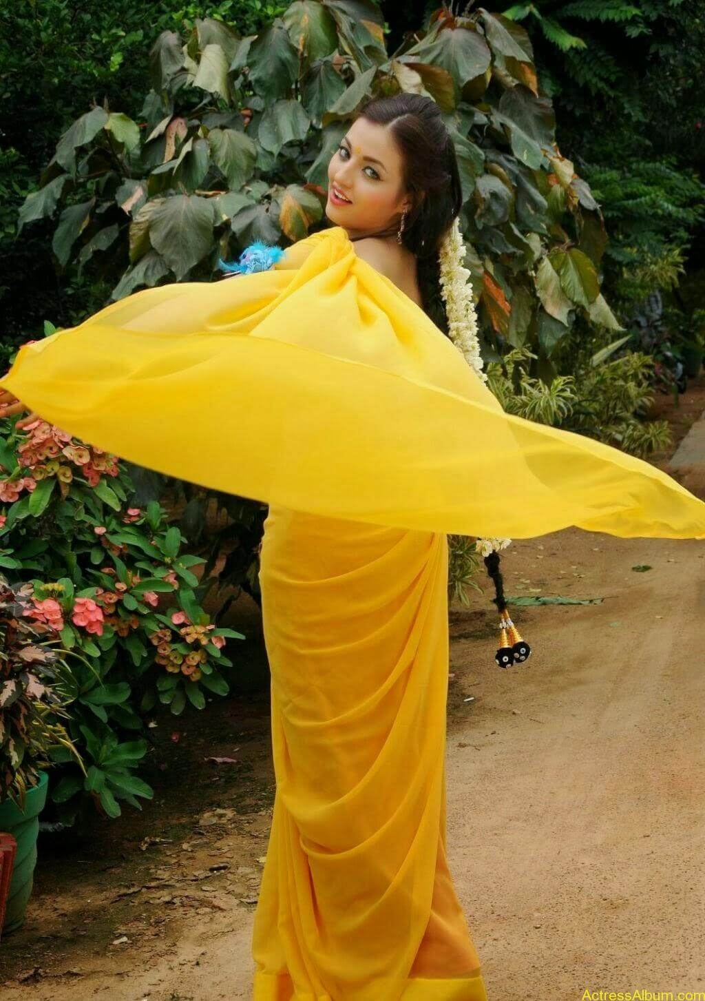 Sana Oberoi Hot Navel Show in Yellow Saree Spicy Photos South Actress4