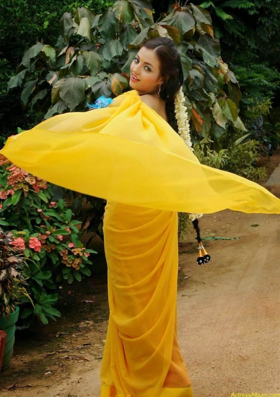 Sana Oberoi Hot Navel Show in Yellow Saree Spicy Photos South Actress4