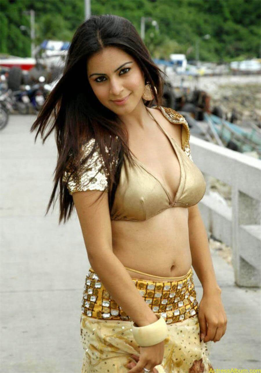 Shraddha Arya Hot Photos (3)