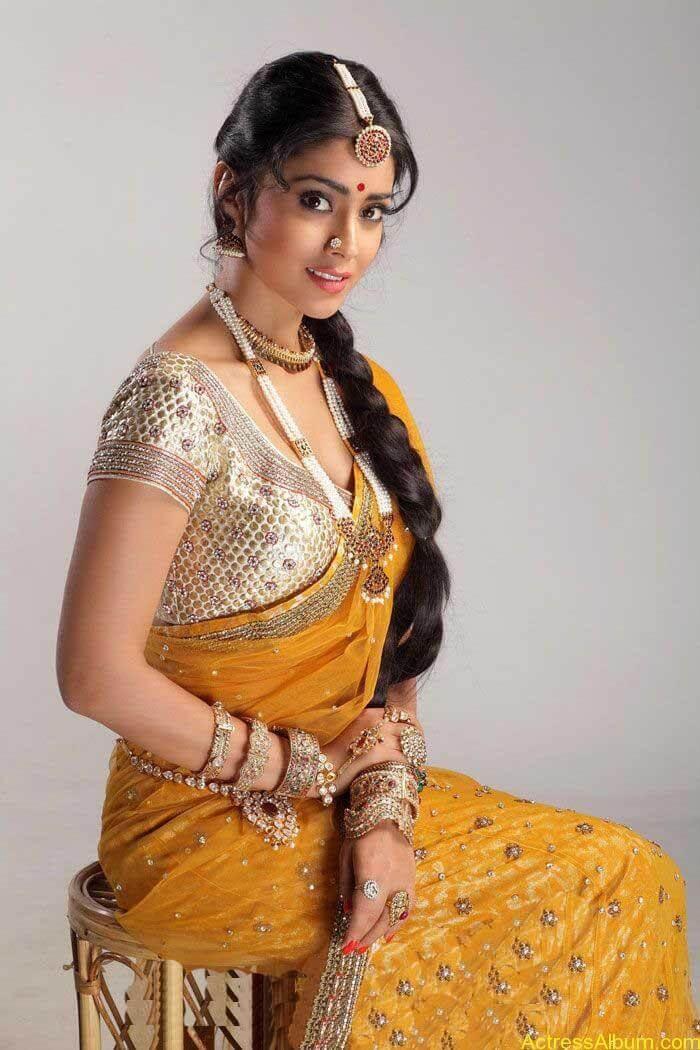 Shriya Saran In Saree (1)