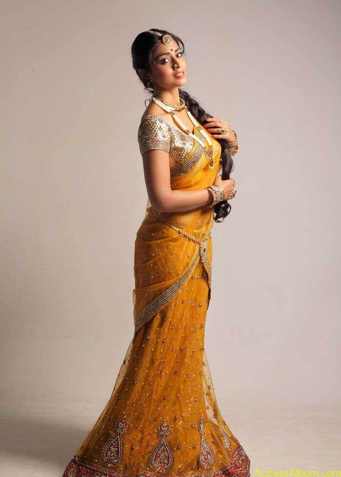Shriya Saran In Saree (2)