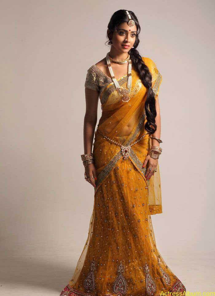 Shriya Saran In Saree (3)