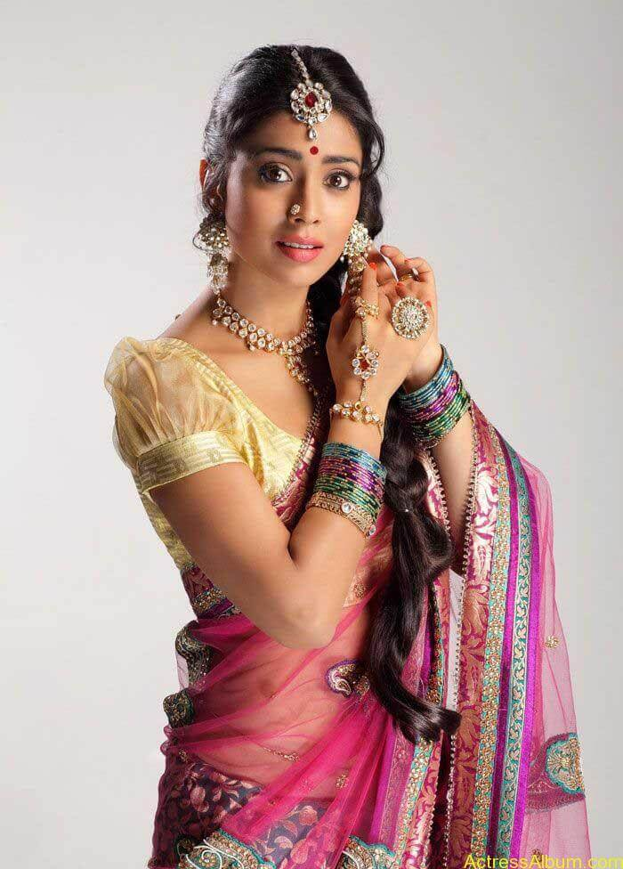 Shriya Saran In Saree (4)