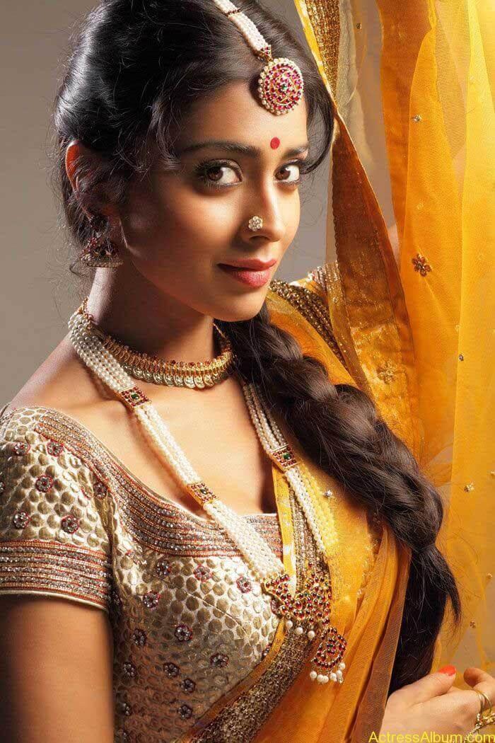 Shriya Saran In Saree (6)