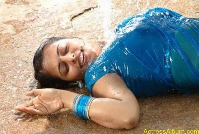 Sindhu Menon in Wet hot Saree (4)
