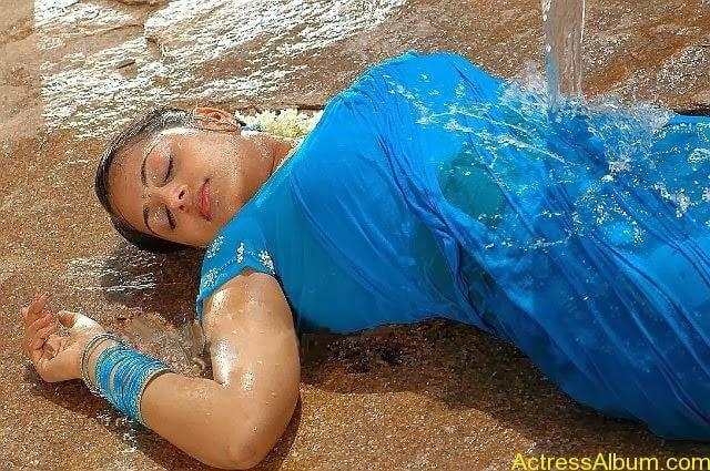 Sindhu Menon in Wet hot Saree (5)