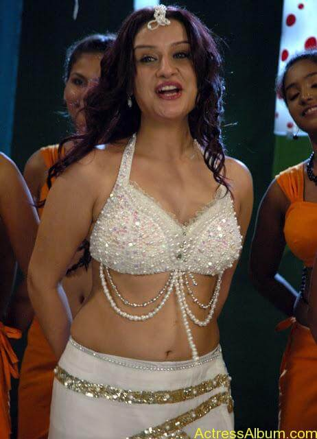 Sonia Agarwal Hot Pics (18)