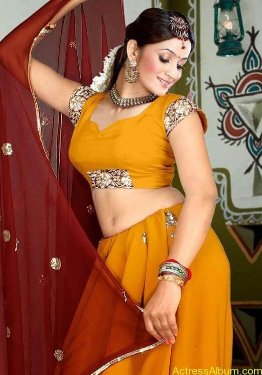South Indian Actress Hot Saree Navel Photos 3
