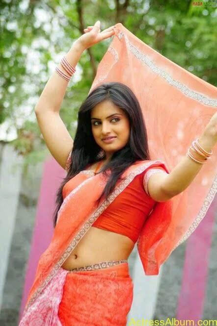 South Indian Actress Hot Saree Navel Photos 6