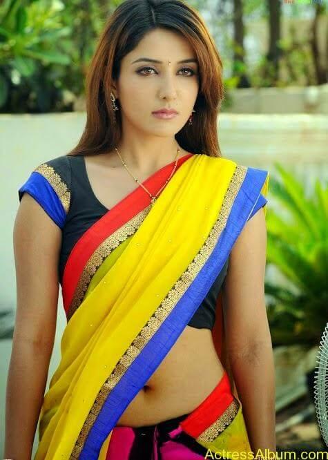 South Indian Actress Hot Saree Navel Photos 7