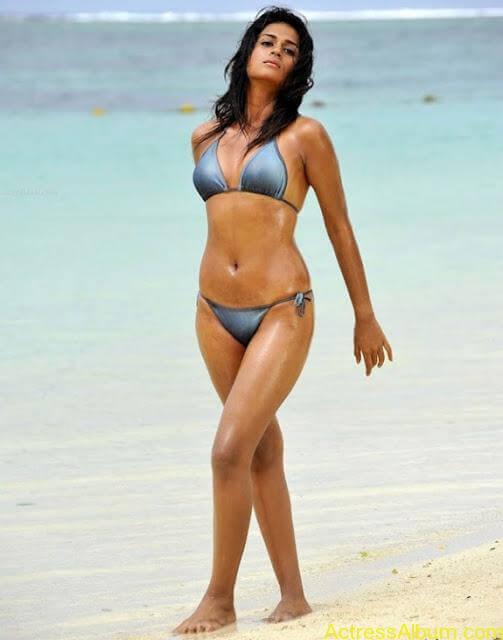 Sraddha Das Bikini Photos (5)