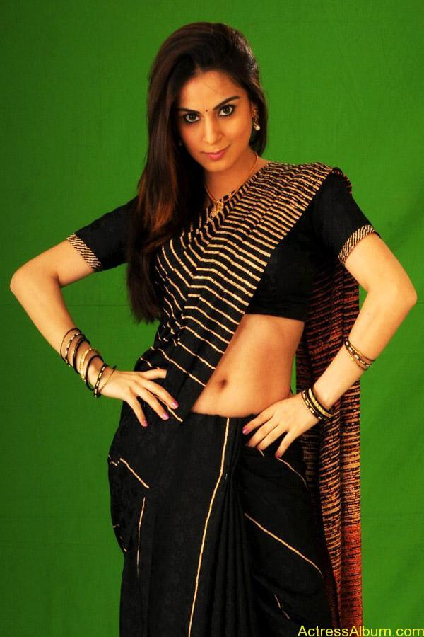 Shraddha arya hot stills in saree