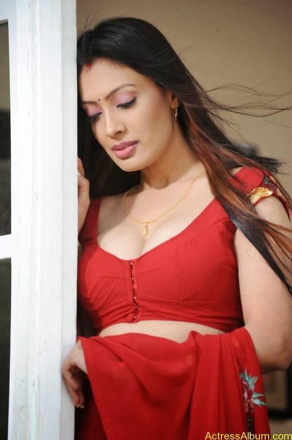 Surabhi-Hot-Navel-Photos-in-Red-Blouse-Saree-6