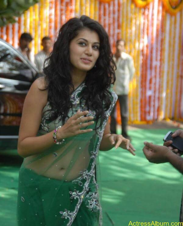 Taapsee Pannu Hot In Green Saree (13)