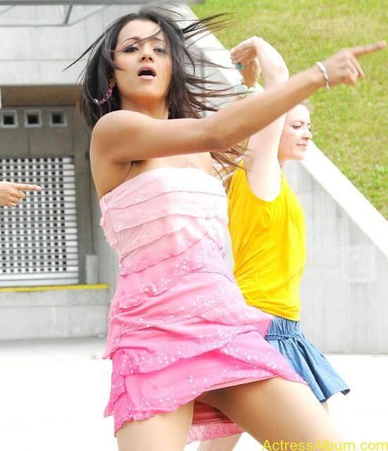 Trisha Hot Thigh Show (8)