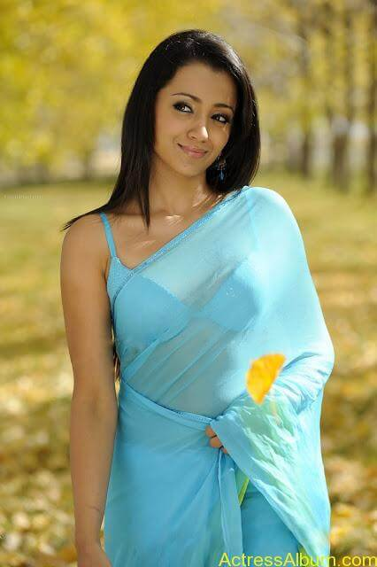 TRISHA KRISHNAN TRANSPARENT HD SAREE PHOTOS