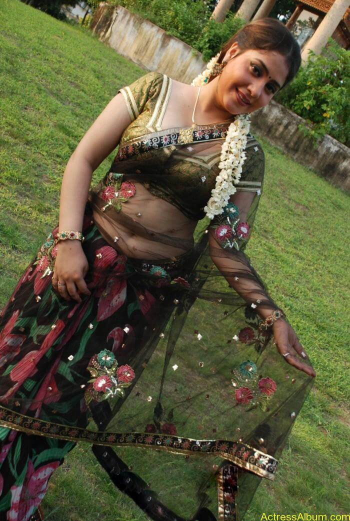 Meenakshi Kailash Hot Saree Stills