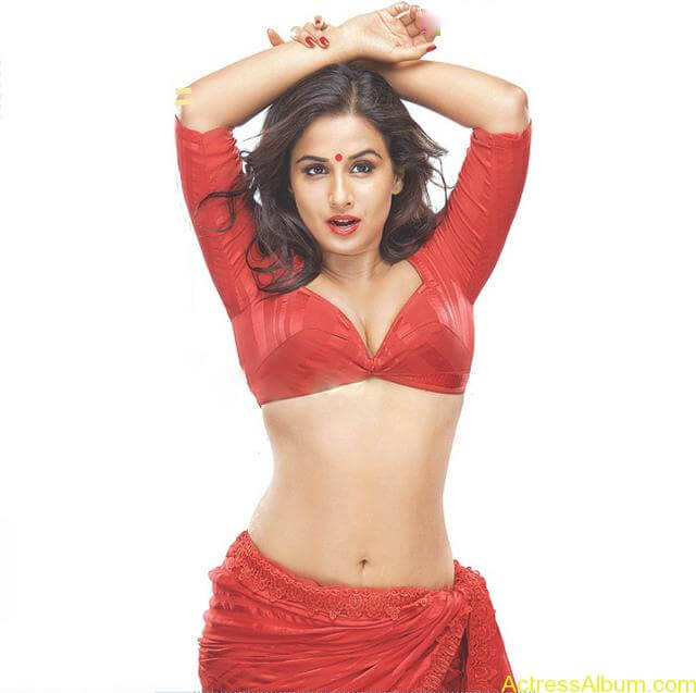 VIDYA BALAN RED HOT SAREE PHOTOS1