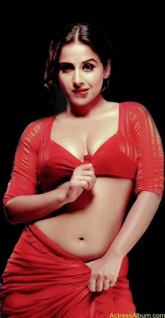 VIDYA BALAN RED HOT SAREE PHOTOS8