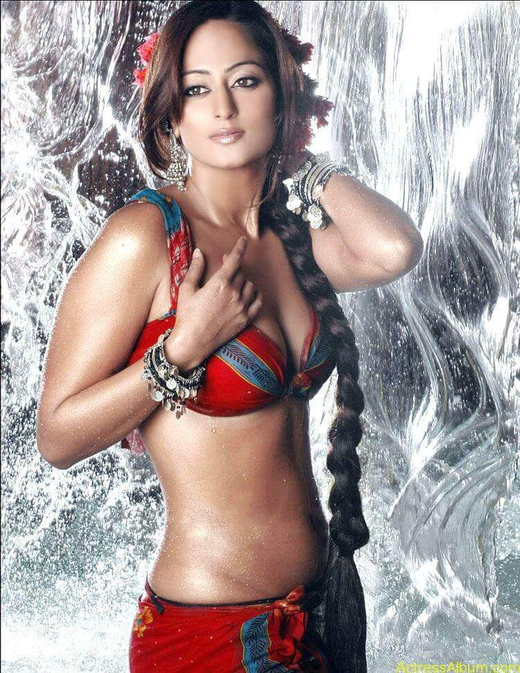 South Indian Bikini Girls Photo Gallery - Actress Album-4908
