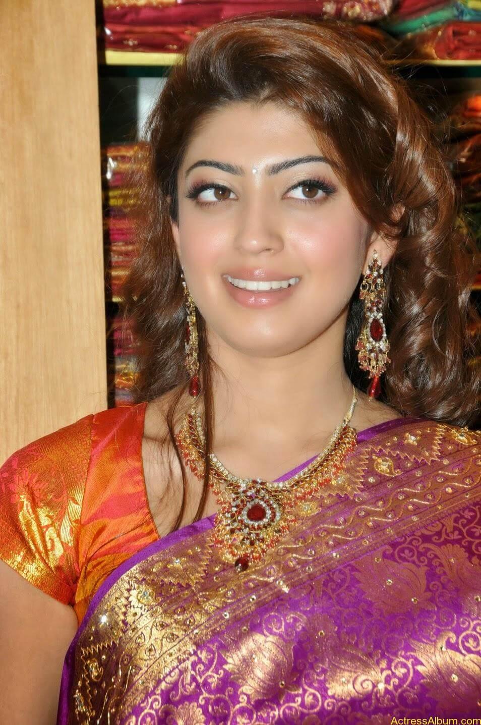Actress Pranitha Hot stills in saree 3