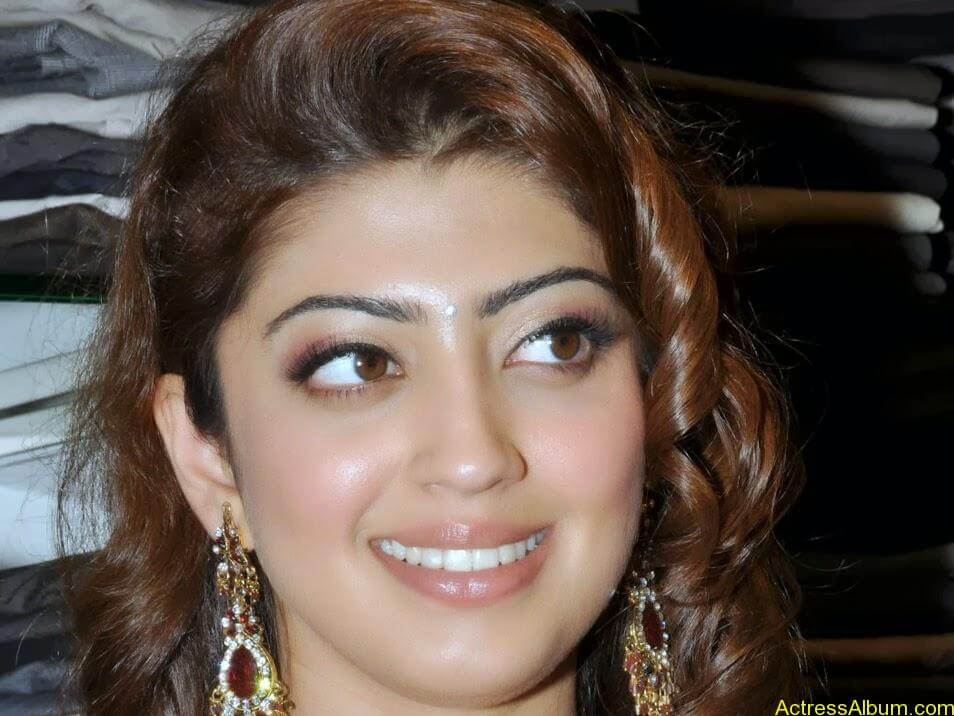 Actress Pranitha Hot stills in saree 7