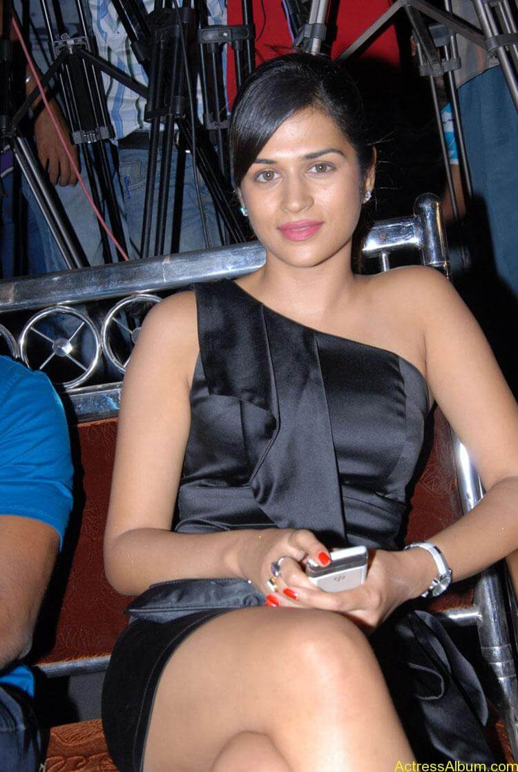 Actress-Shraddha-Das-Hot-Stills (1)
