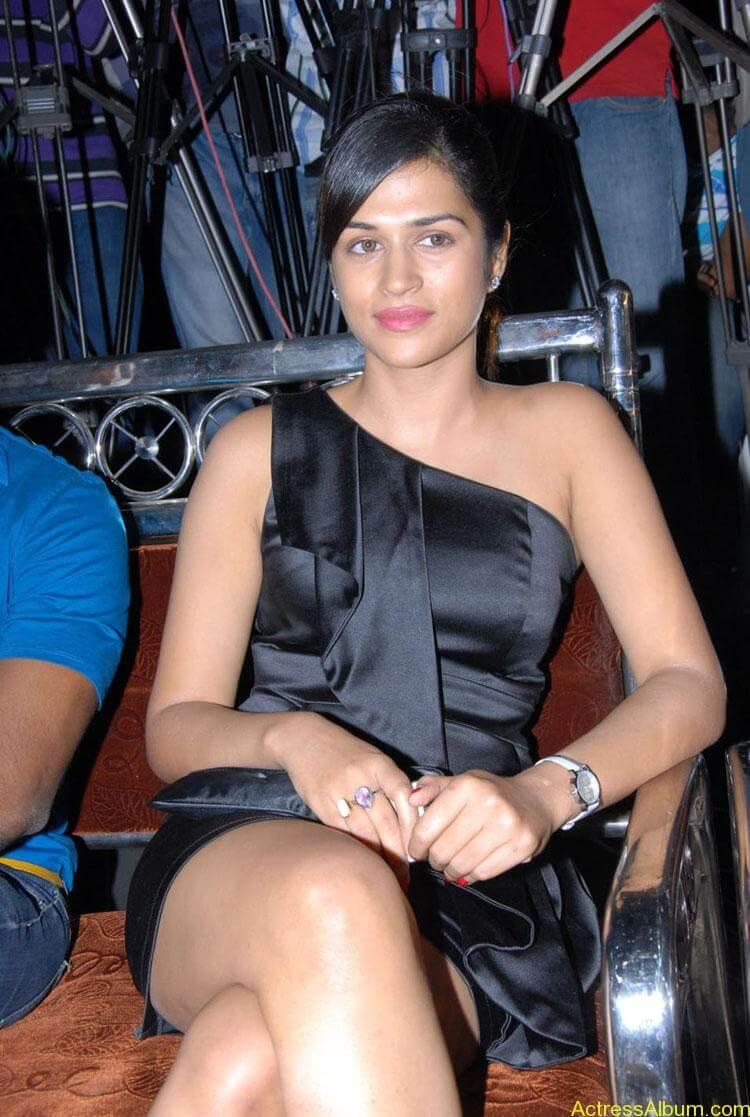 Actress-Shraddha-Das-Hot-Stills (10)