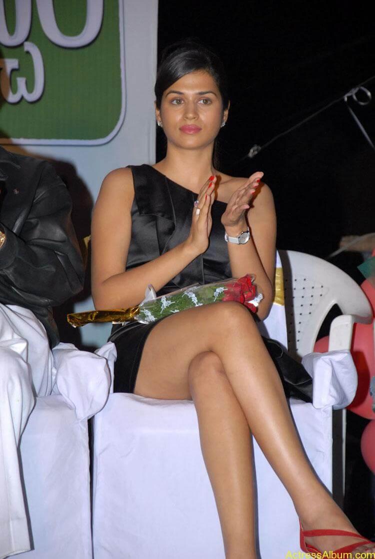 Actress-Shraddha-Das-Hot-Stills (11)