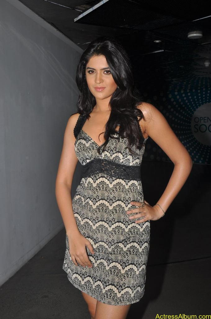 Deeksha Seth Latest Photo Gallery (10)