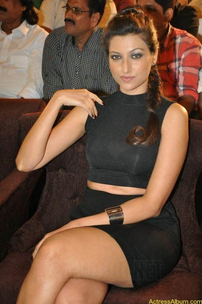 HAMSA NANDINI Exposing Sexy Legs 8