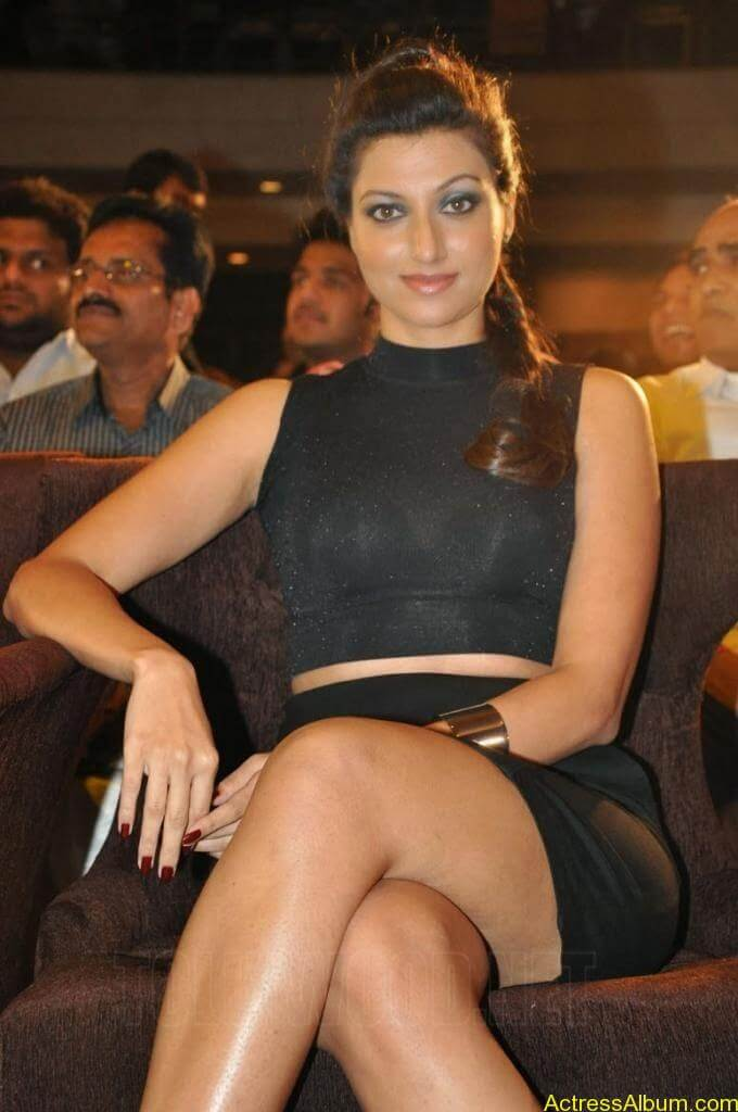 HAMSA NANDINI Exposing Sexy Legs