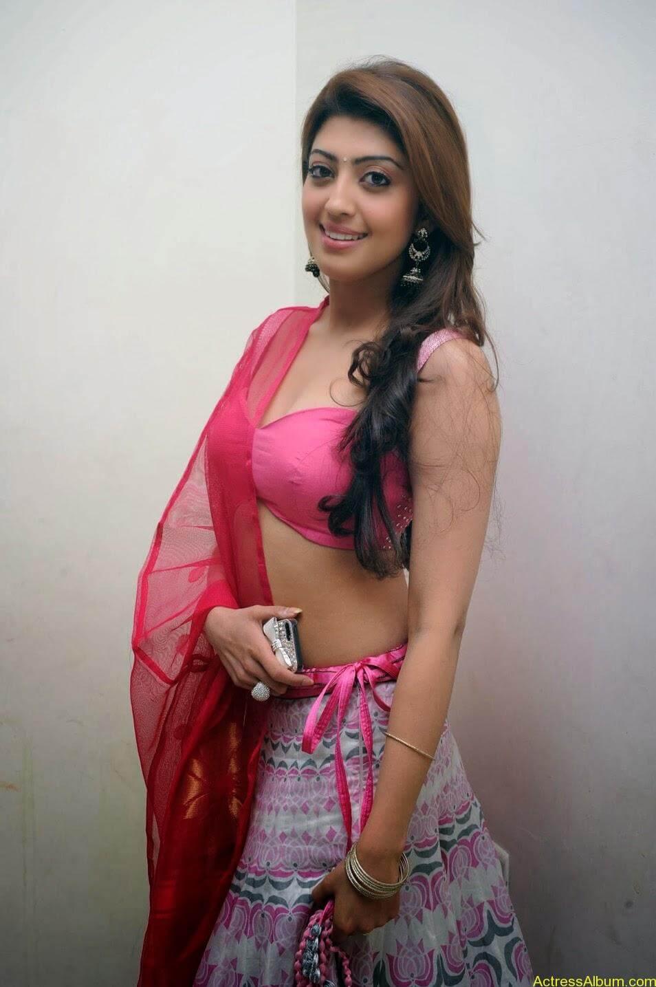 Heroine Pranitha Hot in Pink Dress 6