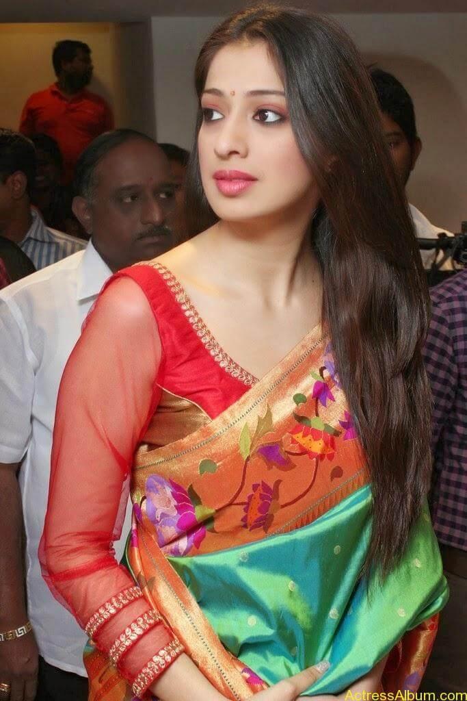 Lakshmi Rai Stunning Photoshoot In Saree (1)