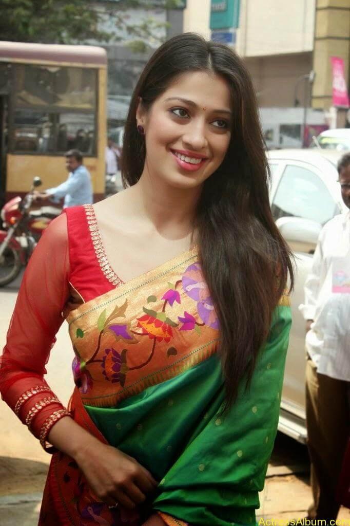 Lakshmi Rai Stunning Photoshoot In Saree (4)