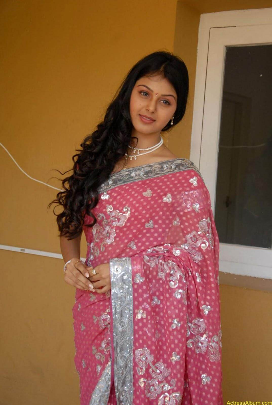 Monal gajjar Hot Saree Stills (13)