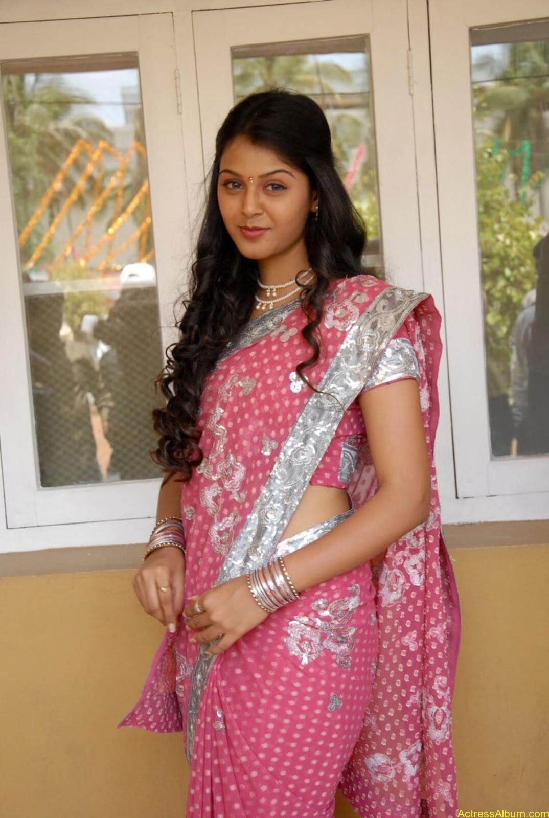 Monal gajjar Hot Saree Stills (14)