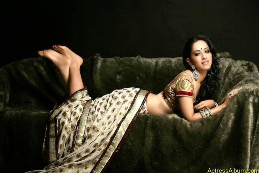 Monali sehgal saree photoshoot 5