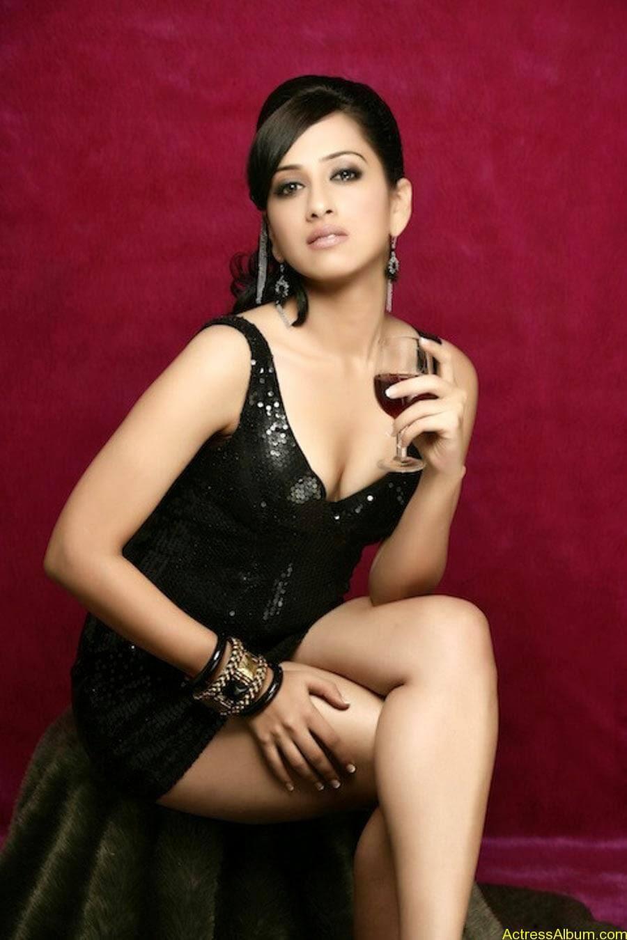 Monali sehgal saree photoshoot 6
