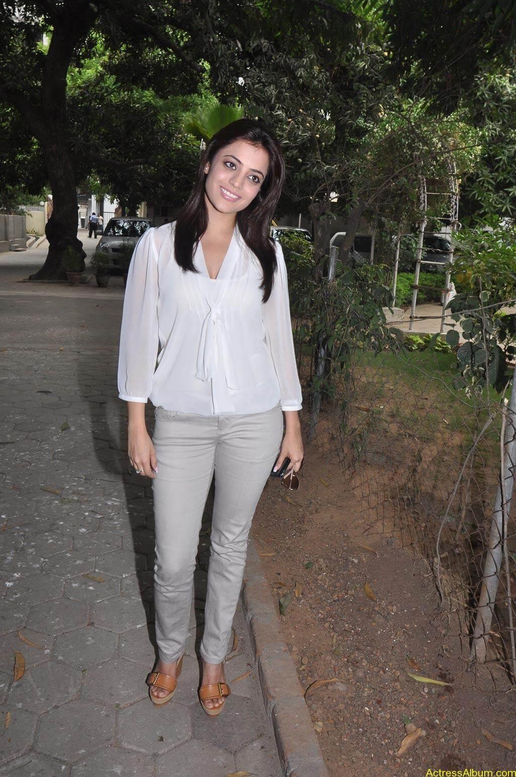 Nisha Agarwal Stills (13)