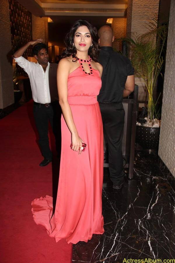 Parvathy Omanakuttan At SIIMA Awards 1