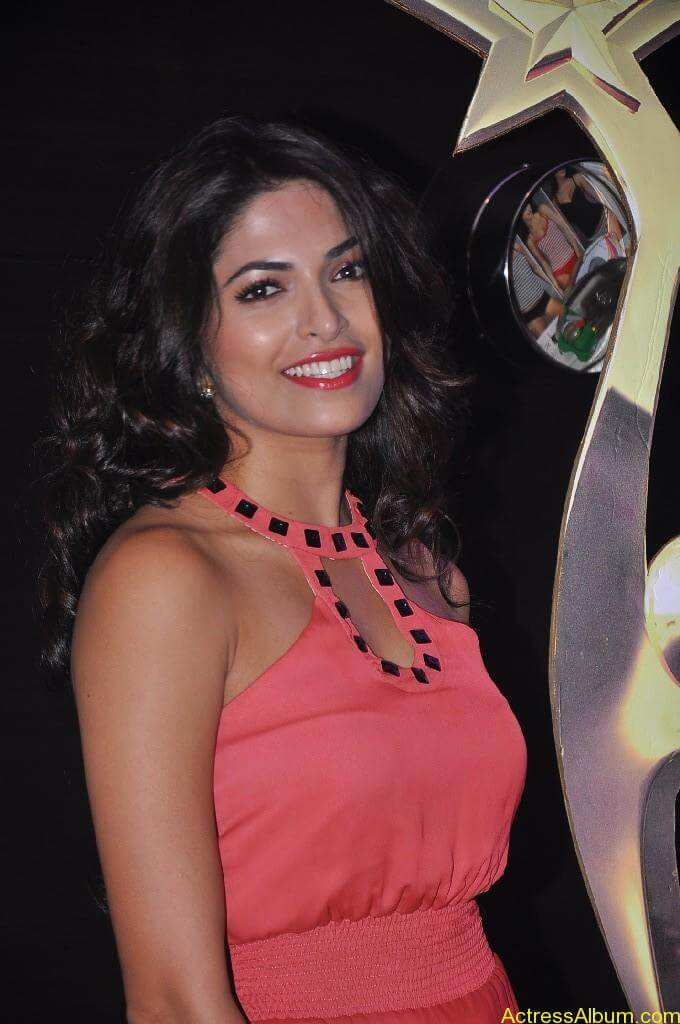 Parvathy Omanakuttan At SIIMA Awards 10