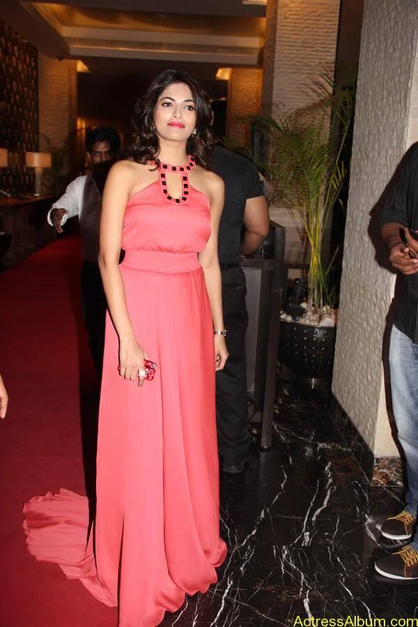 Parvathy Omanakuttan At SIIMA Awards 13