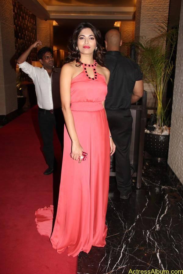 Parvathy Omanakuttan At SIIMA Awards 14