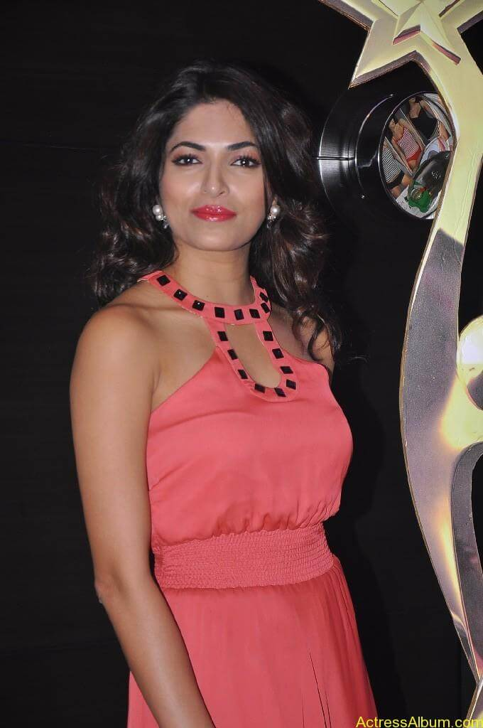 Parvathy Omanakuttan At SIIMA Awards 2