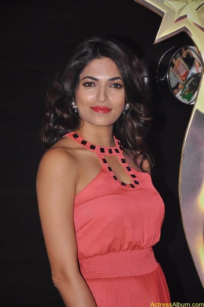 Parvathy Omanakuttan At SIIMA Awards 4