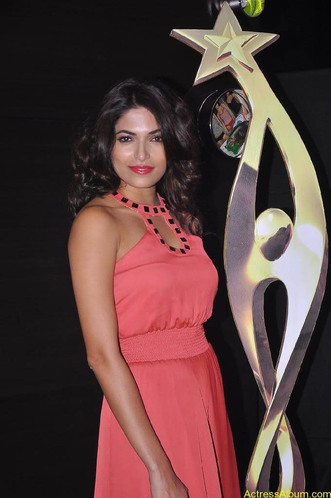 Parvathy Omanakuttan At SIIMA Awards 8